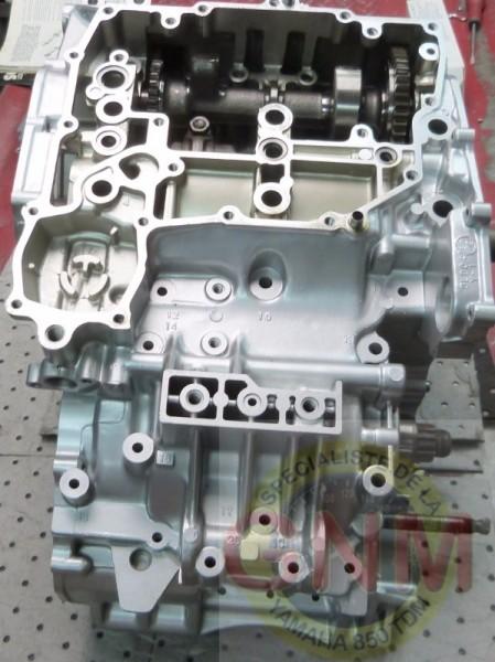P12609011600x1200logognm.JPG